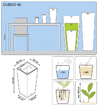office-plants-lechuza-cubico-40
